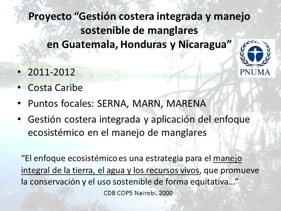 Proyecto Gestión costera integrada y manejo sostenible de manglares en Guatemala, Honduras y Nicaragua