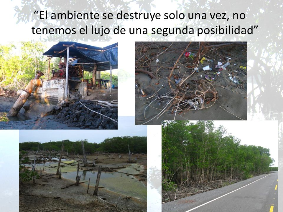 El ambiente se destruye solo una vez, no tenemos el lujo de una segunda posibilidad