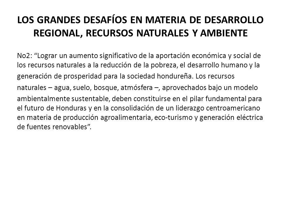 LOS GRANDES DESAFÍOS EN MATERIA DE DESARROLLO REGIONAL, RECURSOS NATURALES Y AMBIENTE