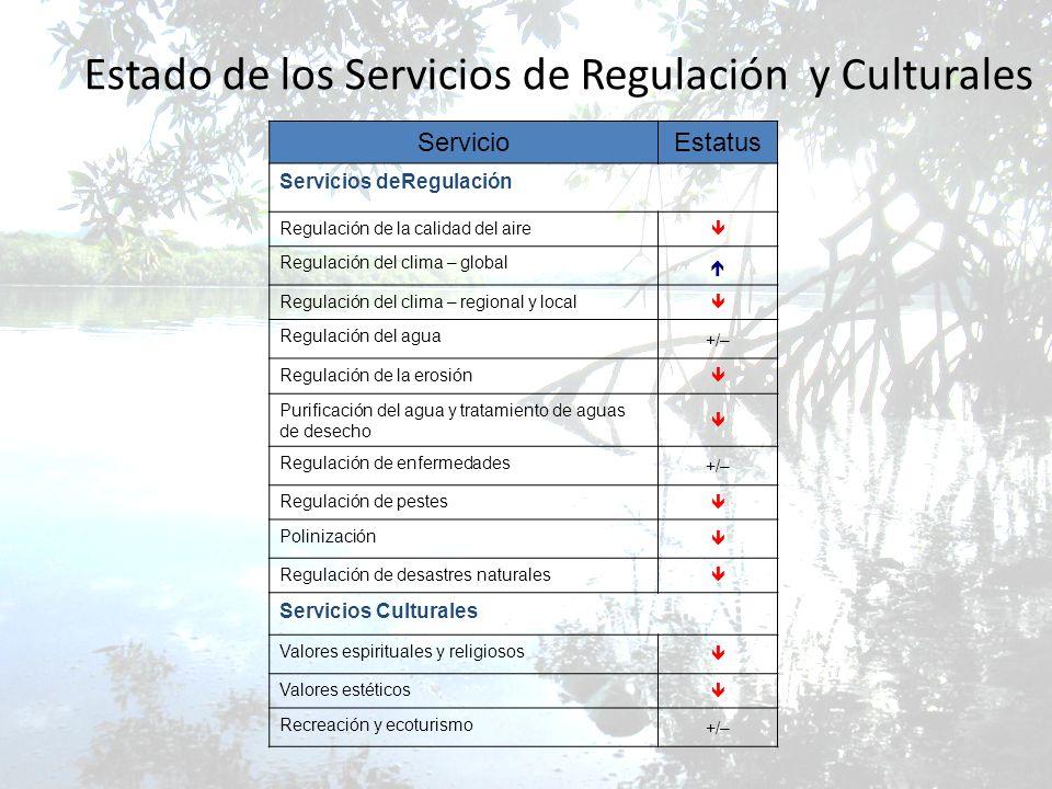Estado de los Servicios de Regulación y Culturales