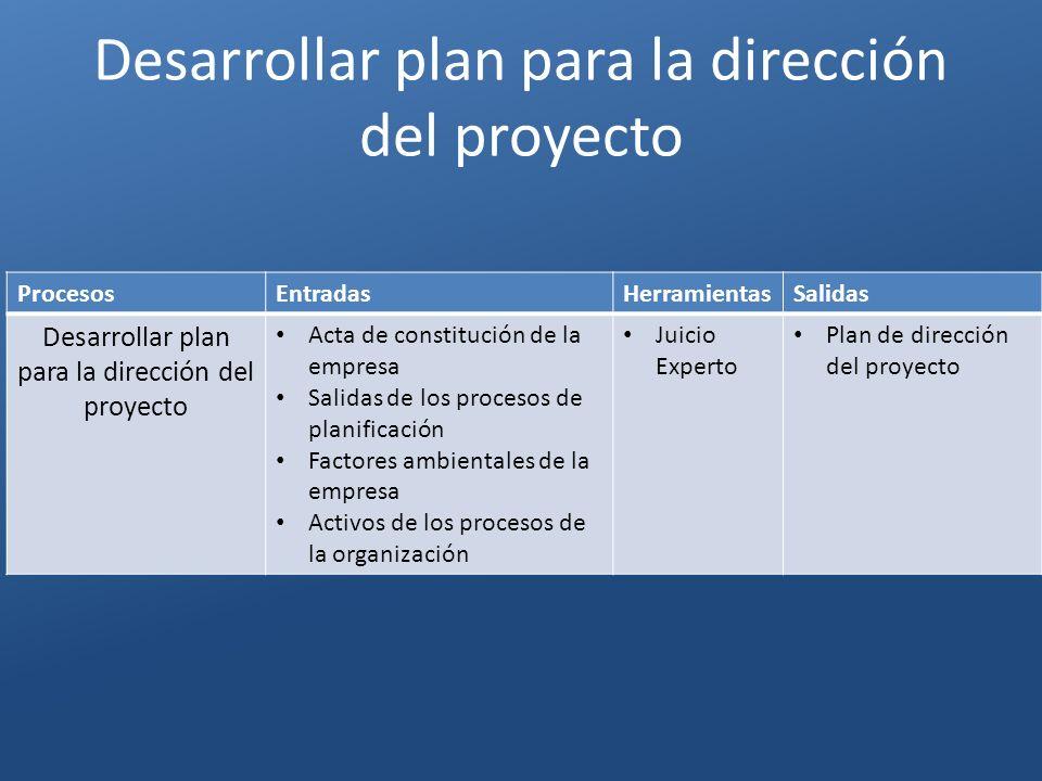 Desarrollar plan para la dirección del proyecto