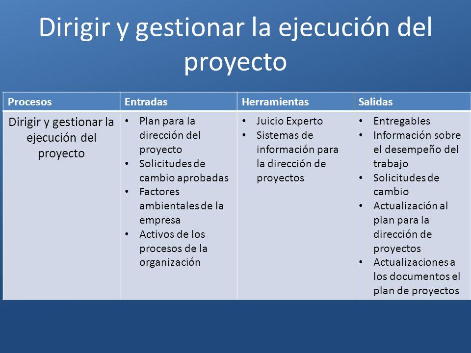 Dirigir y gestionar la ejecución del proyecto