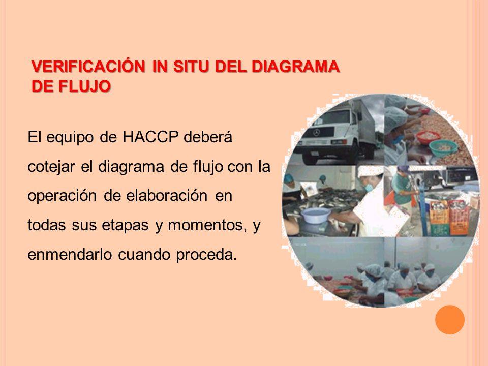 VERIFICACIÓN IN SITU DEL DIAGRAMA DE FLUJO