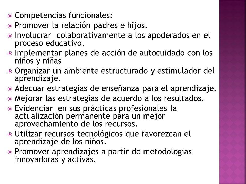 Competencias funcionales: