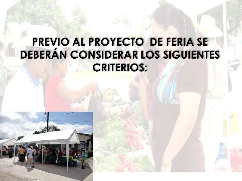 Previo al proyecto de Feria se deberán considerar los siguientes criterios: