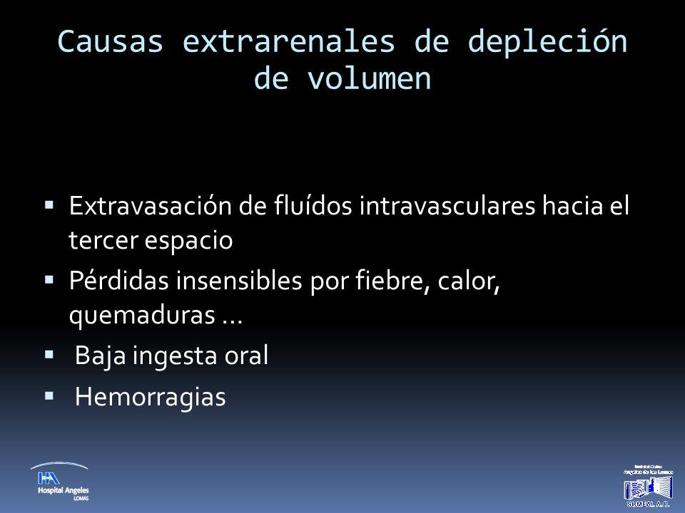 Causas extrarenales de depleción de volumen