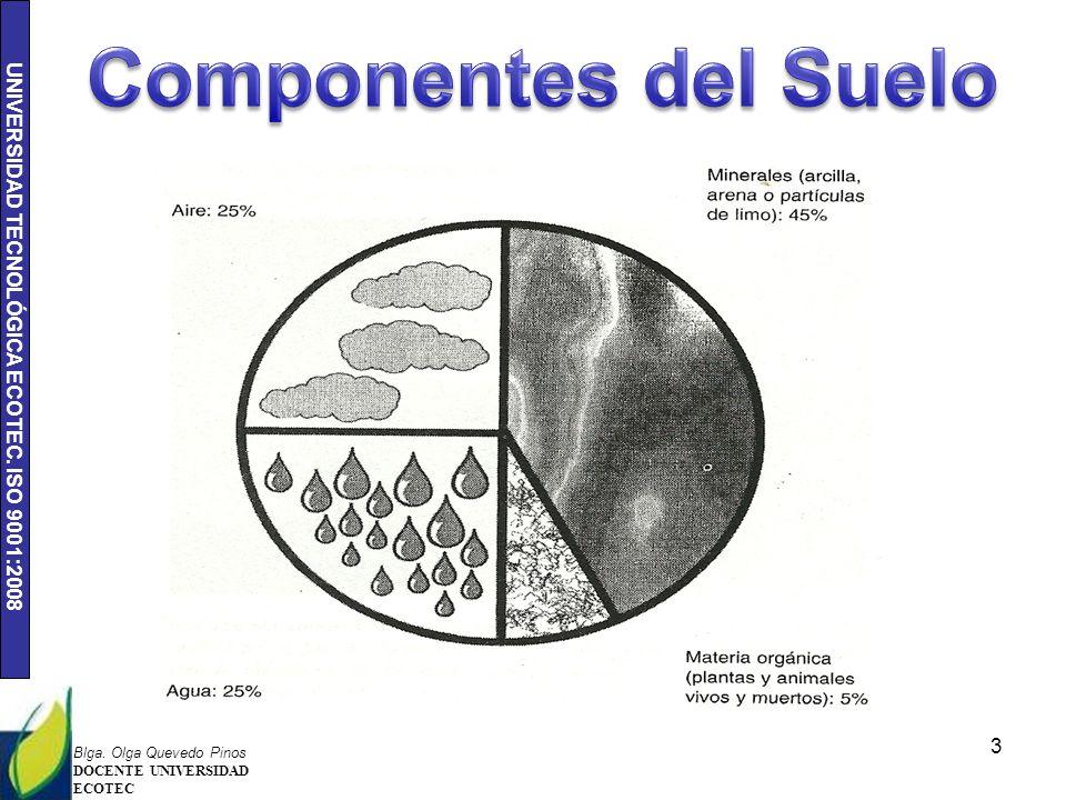 Ecologia y medio ambiente ppt descargar for Componentes quimicos del suelo