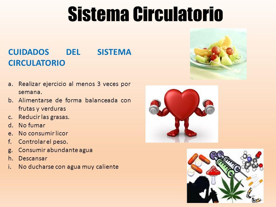 Higiene Del Sistema Respiratorio: ESTÁNDARES NIVEL CELULAR La Célula Partes De La Célula