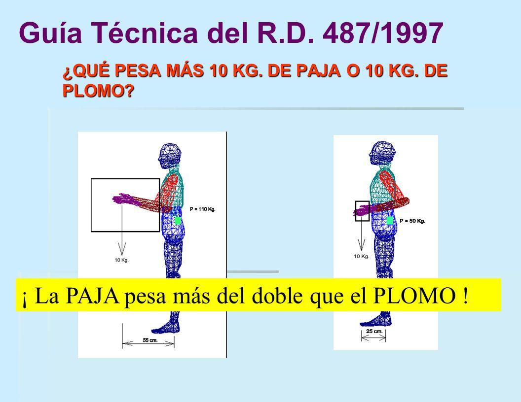Guía Técnica del R.D.487/1997¿QUÉ PESA MÁS 10 KG.