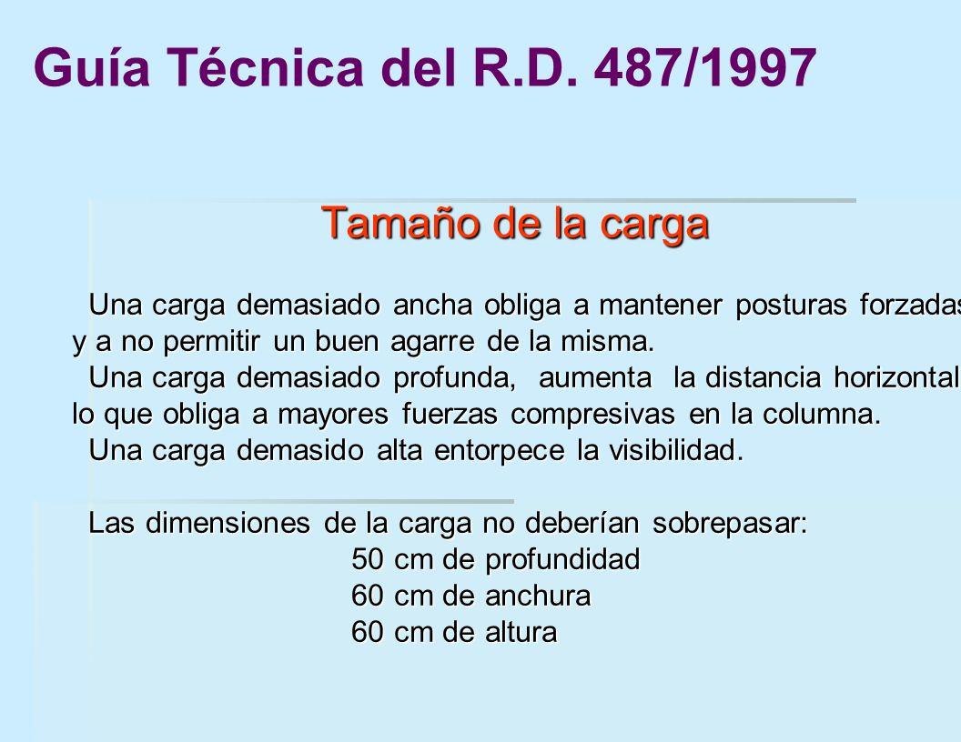 Guía Técnica del R.D. 487/1997 Tamaño de la carga