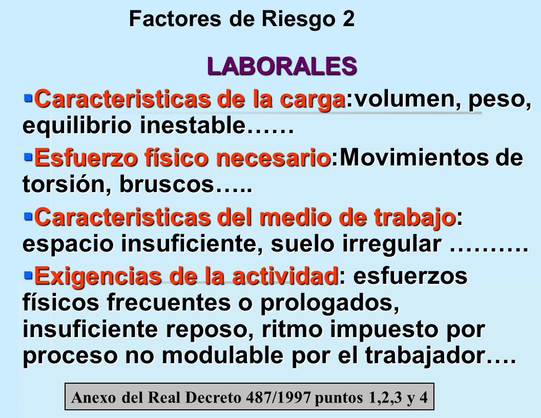 Anexo del Real Decreto 487/1997 puntos 1,2,3 y 4