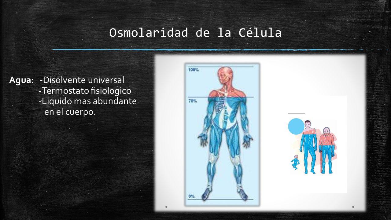 Osmolaridad de la Célula