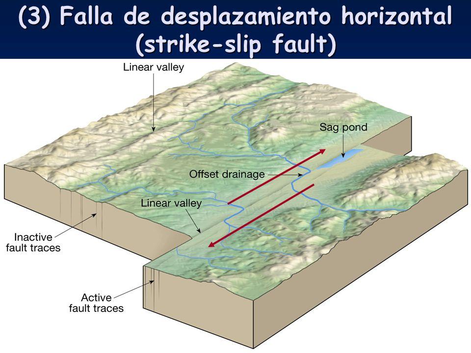 Fantástico Crestas Horizontales En Las Uñas Causas Festooning ...