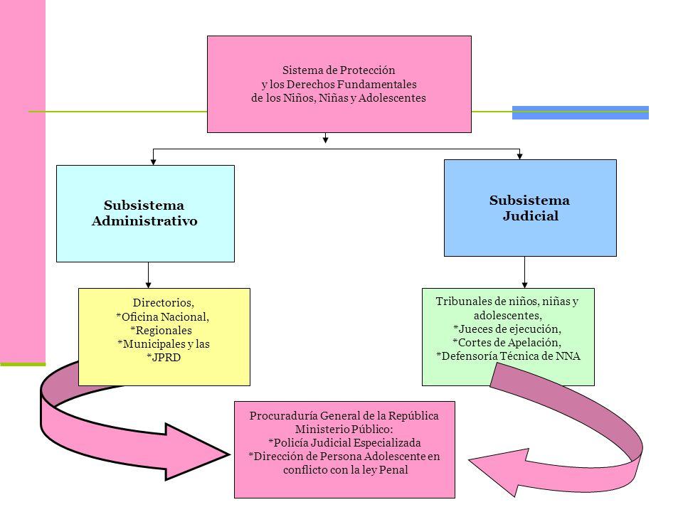 Subsistema Judicial Subsistema Administrativo