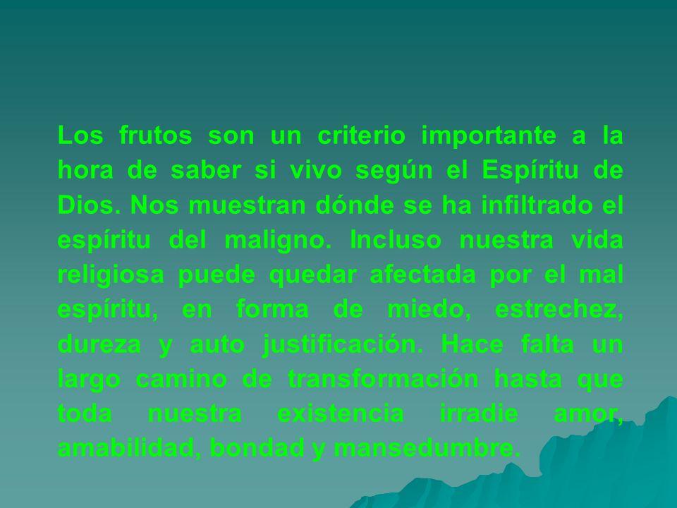 Los frutos son un criterio importante a la hora de saber si vivo según el Espíritu de Dios.