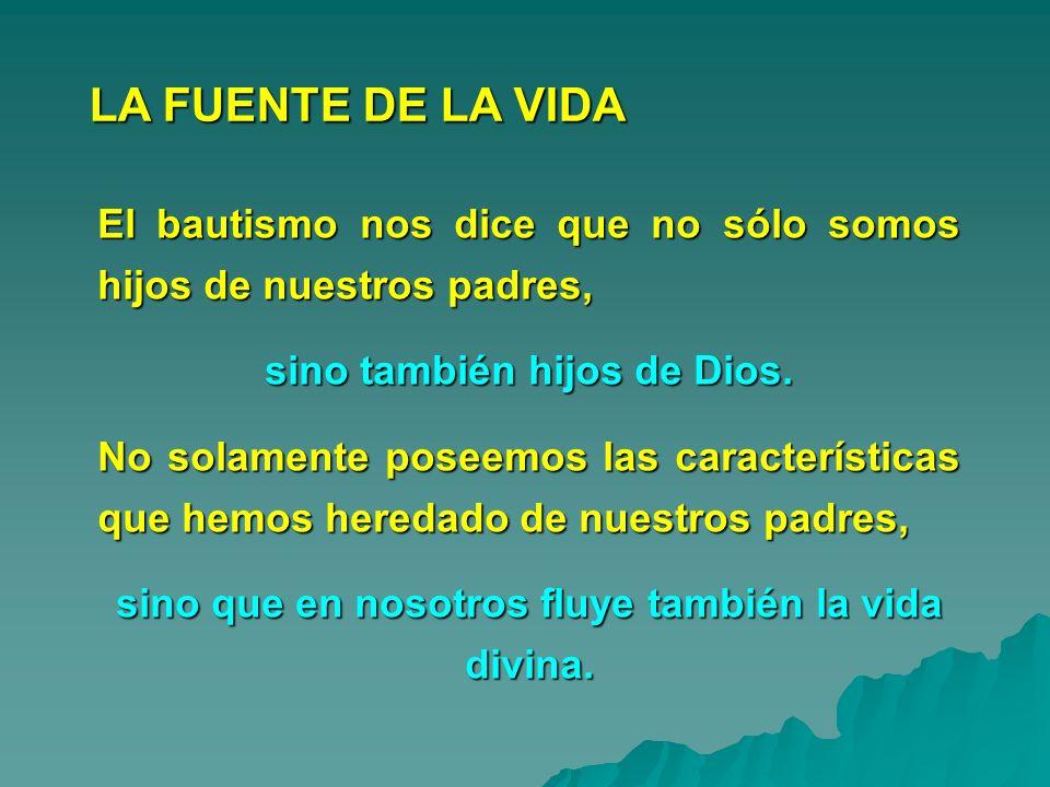 LA FUENTE DE LA VIDA El bautismo nos dice que no sólo somos hijos de nuestros padres, sino también hijos de Dios.
