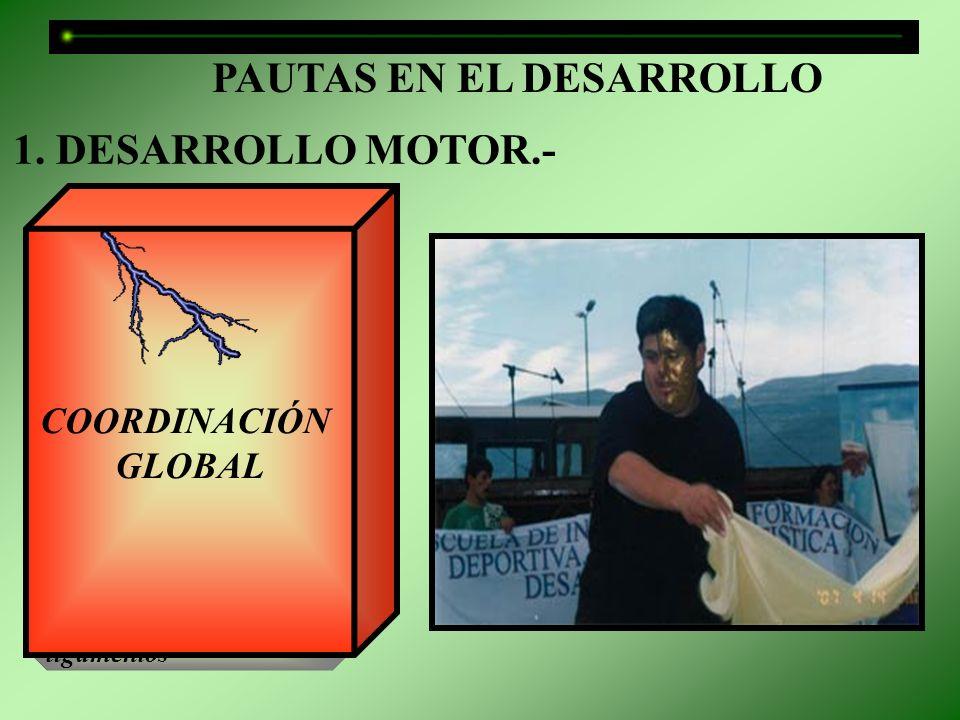 PAUTAS EN EL DESARROLLO
