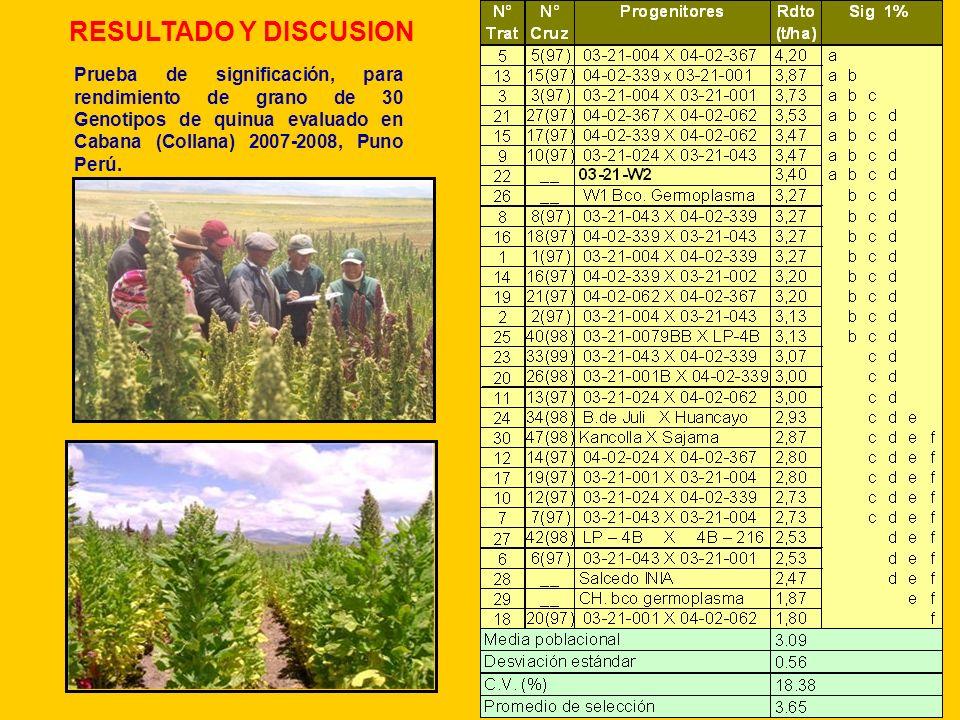 RESULTADO Y DISCUSION Prueba de significación, para rendimiento de grano de 30 Genotipos de quinua evaluado en Cabana (Collana) 2007-2008, Puno Perú.