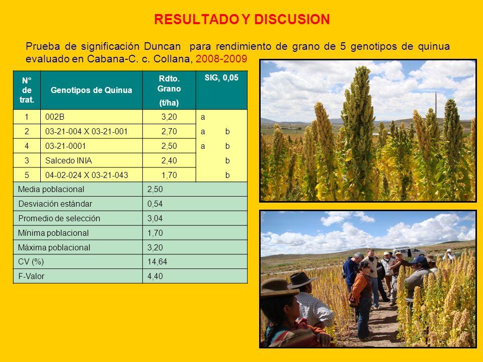 RESULTADO Y DISCUSION Prueba de significación Duncan para rendimiento de grano de 5 genotipos de quinua evaluado en Cabana-C. c. Collana, 2008-2009.