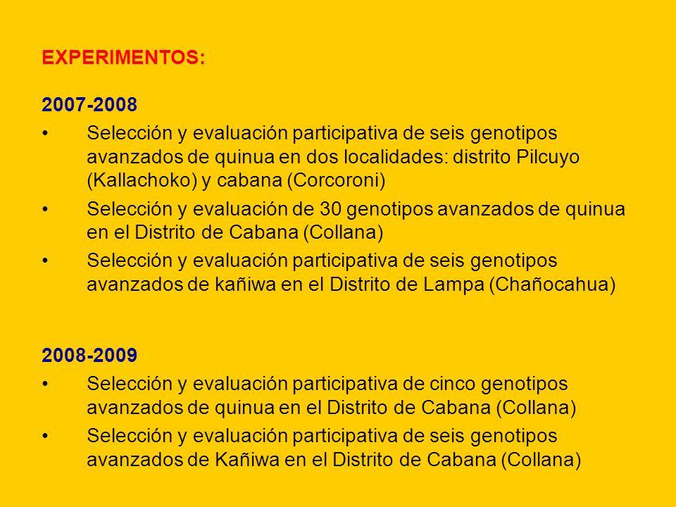 EXPERIMENTOS: 2007-2008.