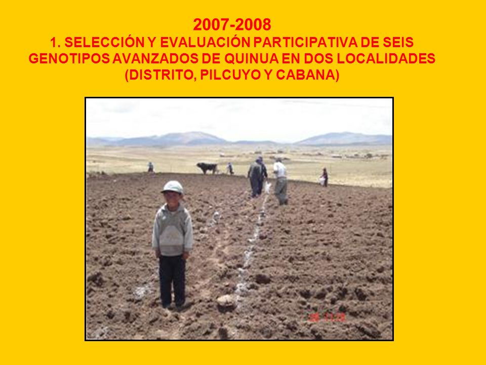 2007-2008 1.
