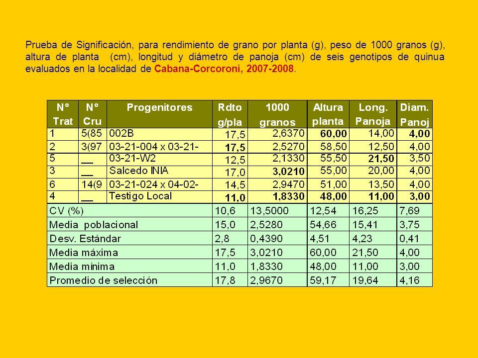 Prueba de Significación, para rendimiento de grano por planta (g), peso de 1000 granos (g), altura de planta (cm), longitud y diámetro de panoja (cm) de seis genotipos de quinua evaluados en la localidad de Cabana-Corcoroni, 2007-2008.