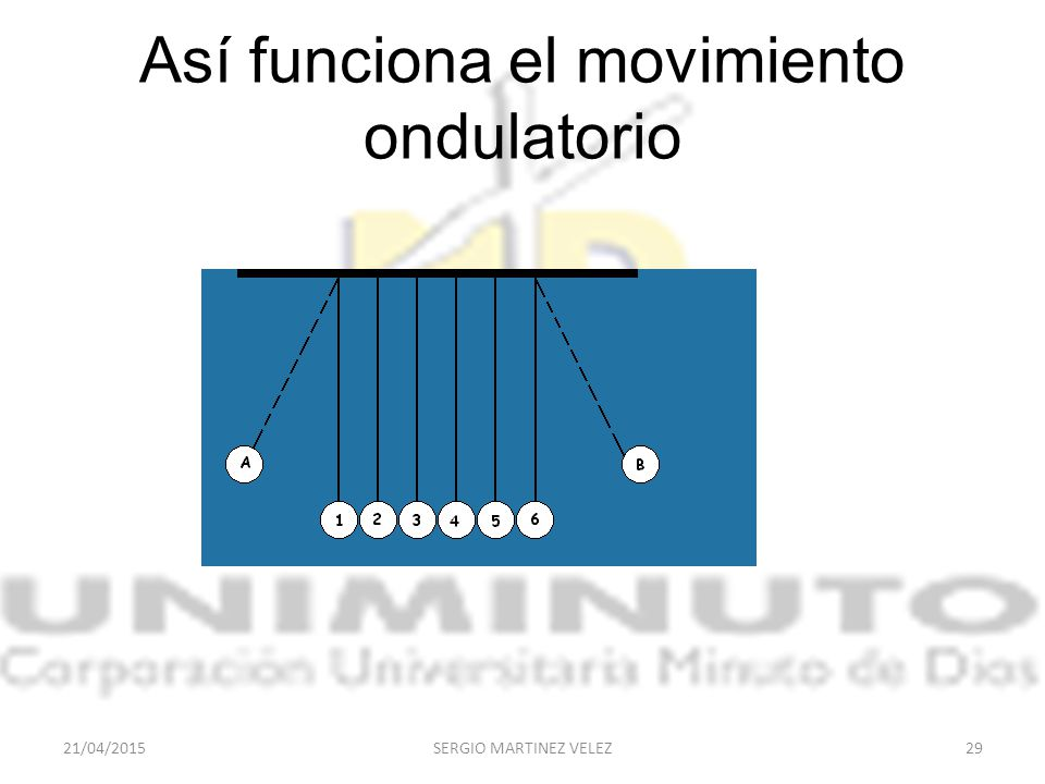 Así funciona el movimiento ondulatorio