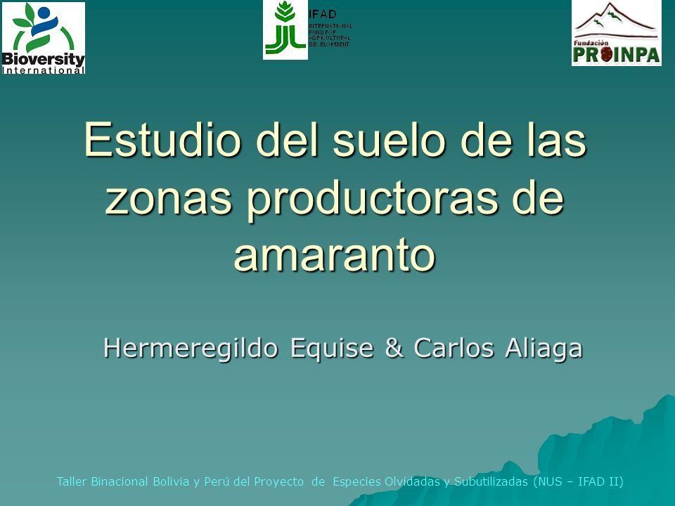 Estudio del suelo de las zonas productoras de amaranto