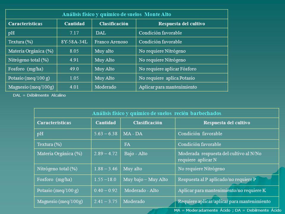 Análisis físico y químico de suelos Monte Alto