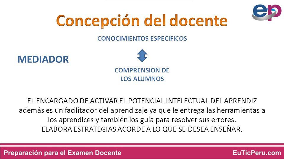 Concepción del docente