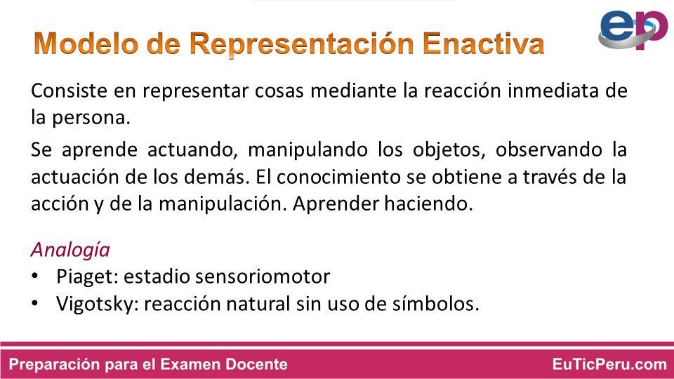 Modelo de Representación Enactiva