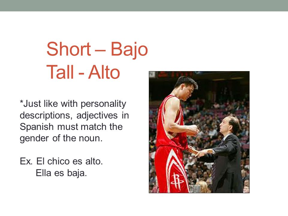 Short – Bajo Tall - Alto *Just like with personality descriptions, adjectives in Spanish must match the gender of the noun.