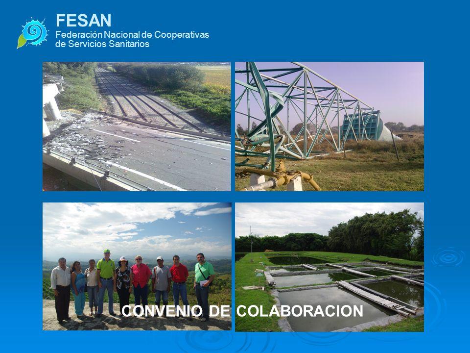 FESAN COOPERATIVE CONVENIO DE COLABORACION