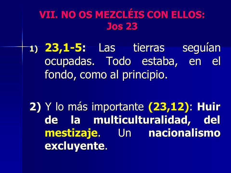 VII. NO OS MEZCLÉIS CON ELLOS: Jos 23