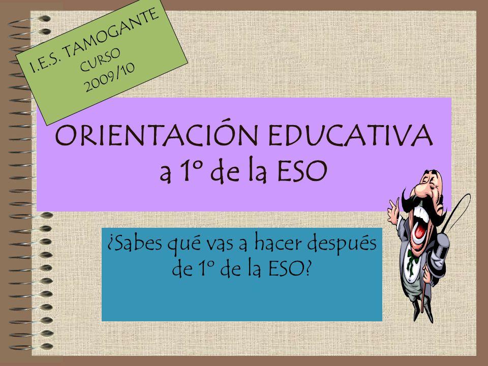 ORIENTACIÓN EDUCATIVA a 1º de la ESO