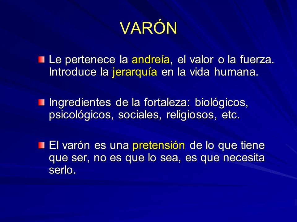 VARÓNLe pertenece la andreía, el valor o la fuerza. Introduce la jerarquía en la vida humana.