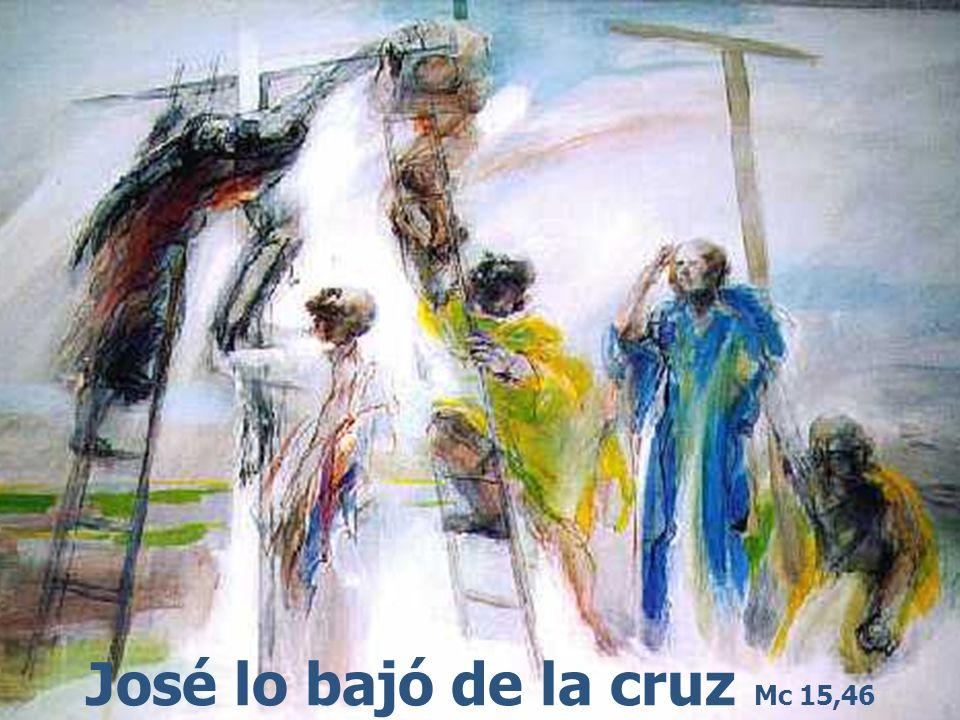 José lo bajó de la cruz Mc 15,46
