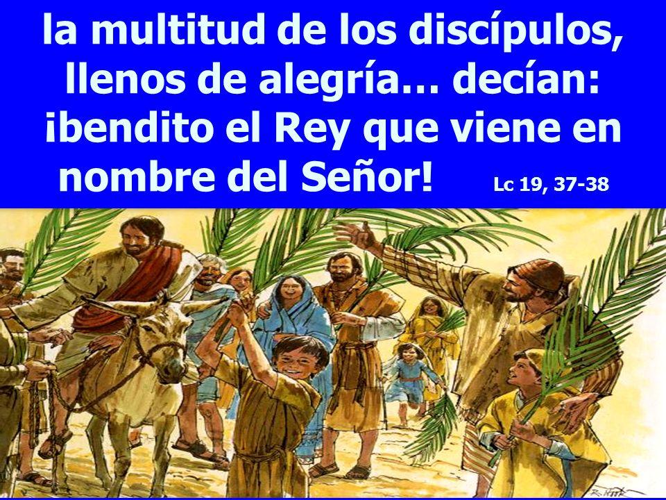 la multitud de los discípulos, llenos de alegría… decían: ¡bendito el Rey que viene en nombre del Señor.