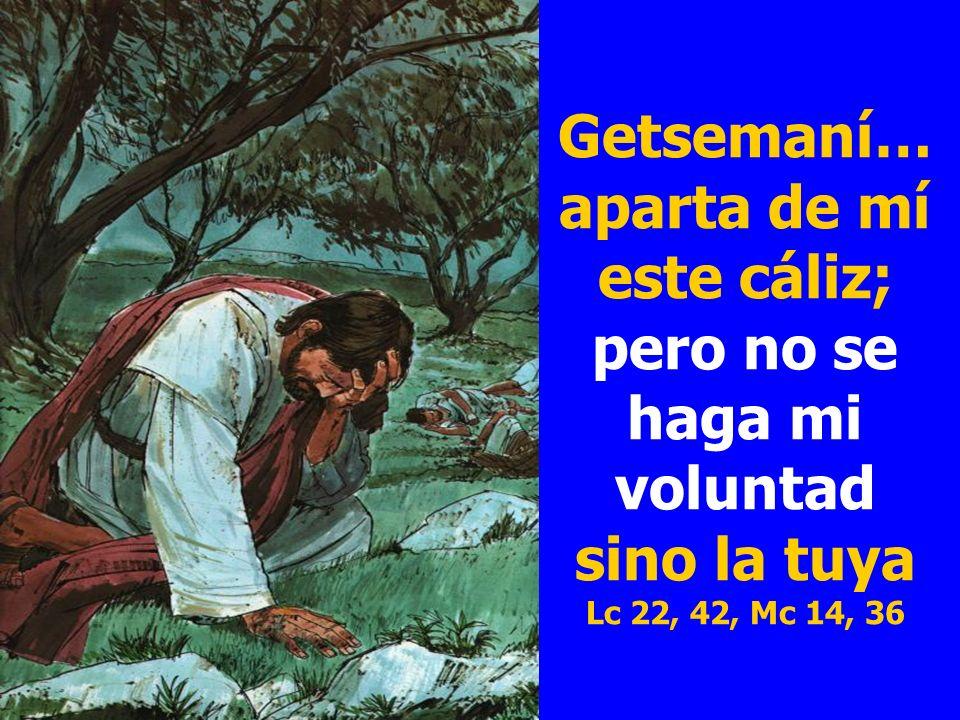 Getsemaní… aparta de mí este cáliz; pero no se haga mi voluntad sino la tuya Lc 22, 42, Mc 14, 36