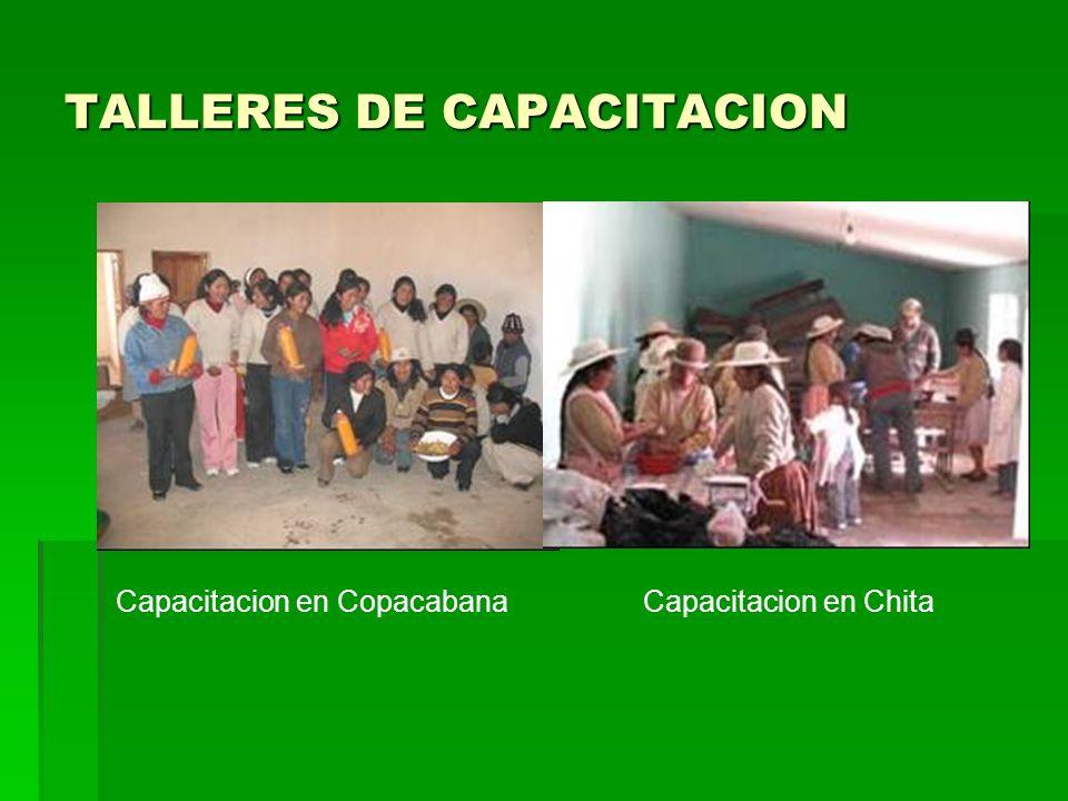 TALLERES DE CAPACITACION