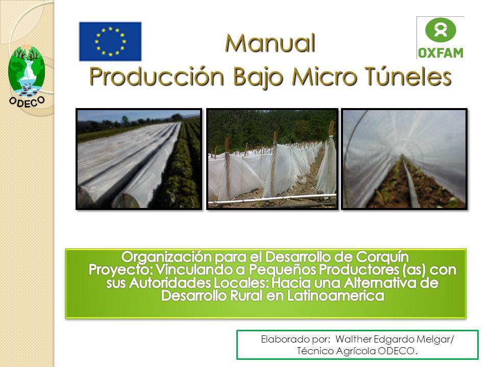Manual Producción Bajo Micro Túneles