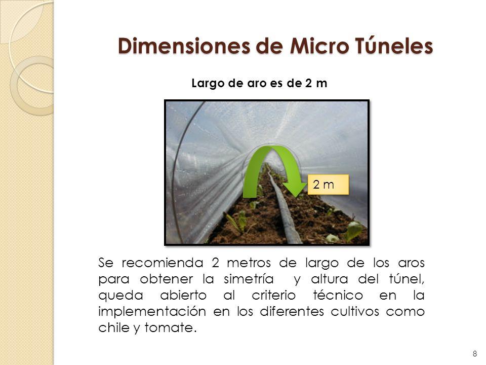 Dimensiones de Micro Túneles