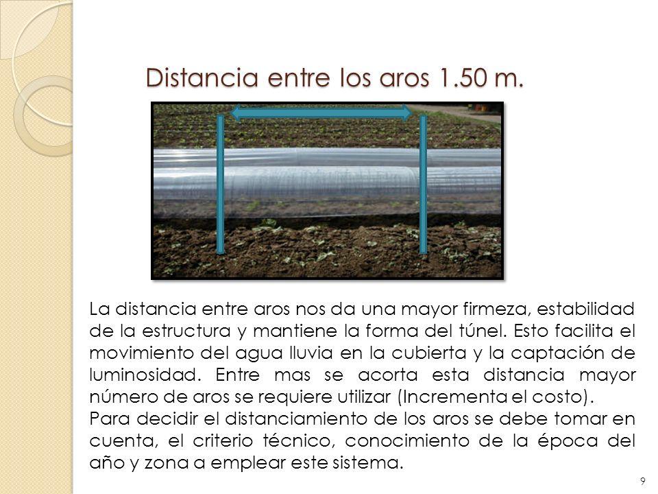 Distancia entre los aros 1.50 m.