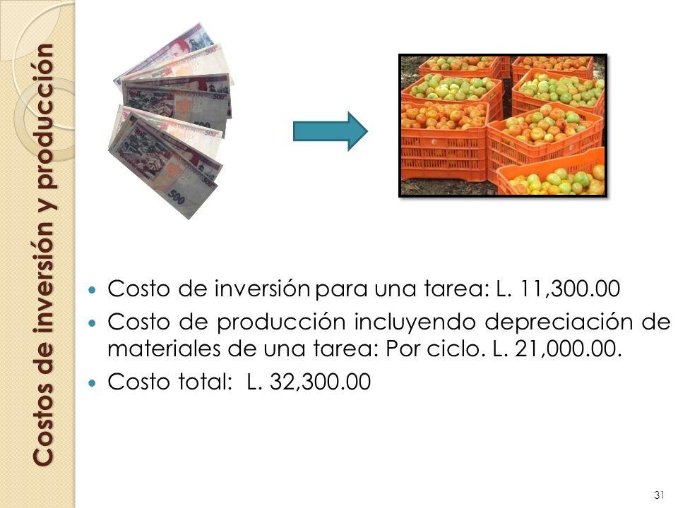 Costos de inversión y producción