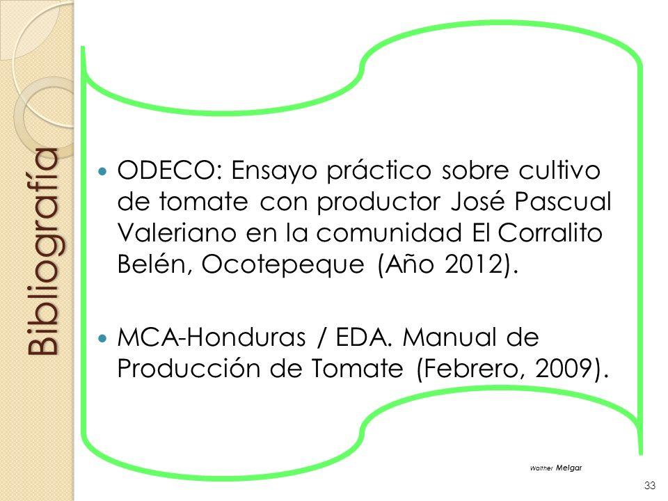 ODECO: Ensayo práctico sobre cultivo de tomate con productor José Pascual Valeriano en la comunidad El Corralito Belén, Ocotepeque (Año 2012).