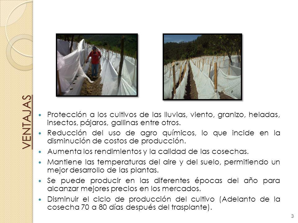 VENTAJASProtección a los cultivos de las lluvias, viento, granizo, heladas, insectos, pájaros, gallinas entre otros.