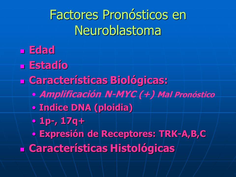 Factores Pronósticos en Neuroblastoma