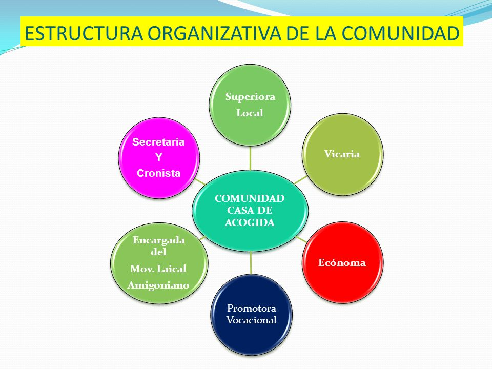ESTRUCTURA ORGANIZATIVA DE LA COMUNIDAD