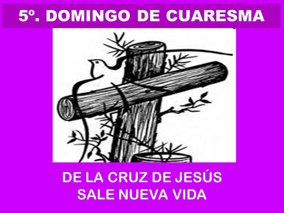 5º. DOMINGO DE CUARESMA DE LA CRUZ DE JESÚS SALE NUEVA VIDA