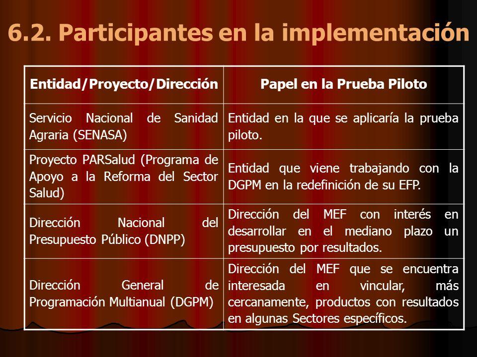 6.2. Participantes en la implementación